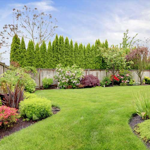 southland nature scapes fertilizing